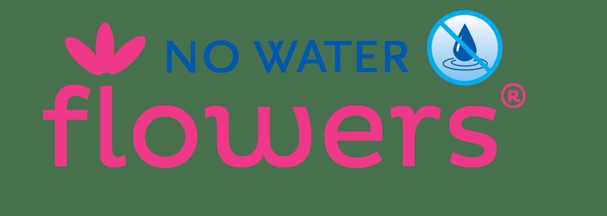 Logo voor No Water flowers. de originele wax amaryllis