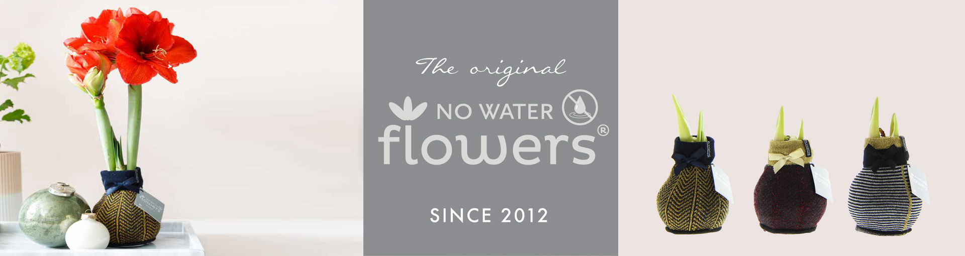 No Water Flowers
