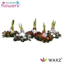 No water flowers, wax amaryllis kerstkrans