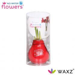 wax amaryllis valentijn print i love you in koker