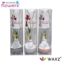 wax amaryllis met dip natuurlijke tinten in tas